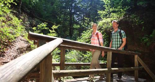 Wanderer passieren eine Holzbrücke im Wald