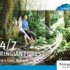 Imagebroschüre Thüringer Wald jetzt auch als englische Version!