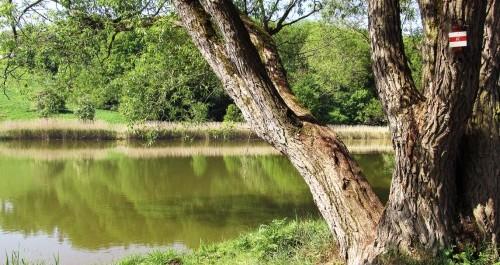 Wanderweg mit Blick auf den Fluss