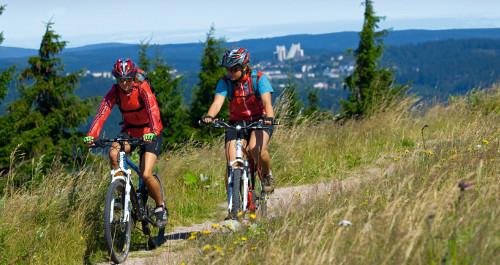 zwei Mountainbiker fahren auf dem Wiesenweg, Panorama Oberhof im Hintergrund