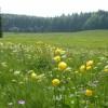 """Bewerbungsstart: Bundeswettbewerb """"Nachhaltige Tourismusdestination"""""""