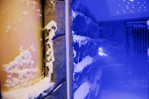 Schneekammer
