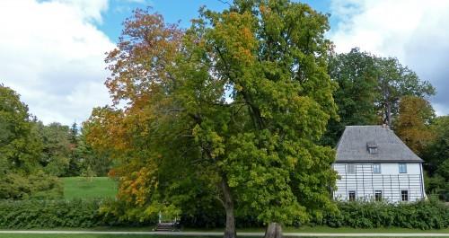 Goethe Gartenhaus im Ilmpark