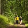 Thüringer Wanderverpflegung: Workshop II