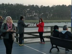 Zingst mitreisende Partner auf der Seebrücke