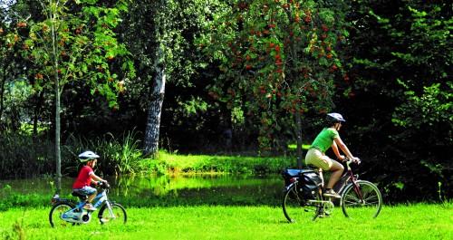 zwei Radfahrer fahren über eine Wiese am Wasser