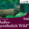 """Wald genießen – """"Außergewöhnlich Wild"""": Das Wild-Genuss-Wochenende"""