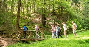 Wanderer im Biosphärenreservat Thüringer Wald
