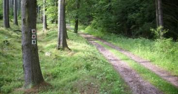 Terminänderung für Wegewarteausbildung