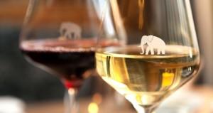 Weingläser mit Elephant -Aufdruck