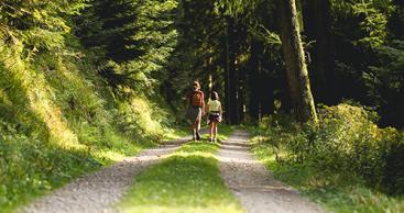 Virtuelle Thüringen-Spaziergänge sehr beliebt