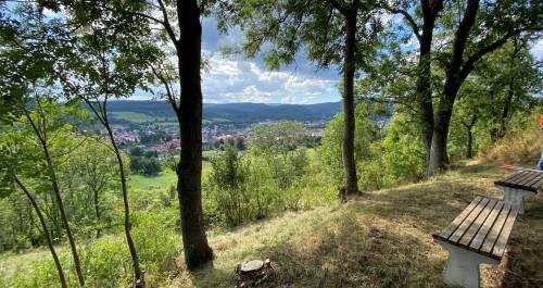 freigeschnittener Aussichtspunkt in Gräfenroda