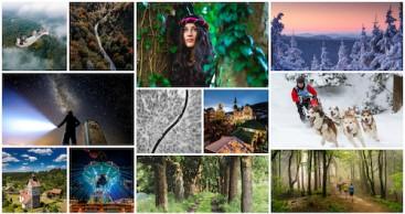 Dein Bild für den Thüringer Wald: Gewinner stehen fest