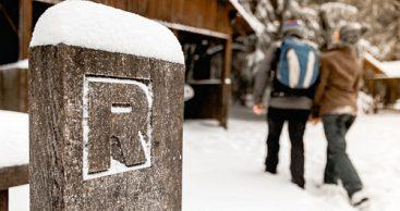 Neue Version der SchneeApp Thüringer Wald