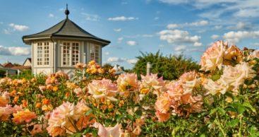 Parks & Gärten als Markenbotschafter anerkannt
